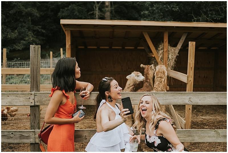 Llama farm wedding venue