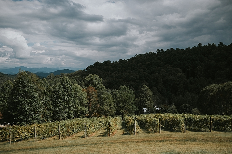 Vineyards at bettys creek wedding asheville