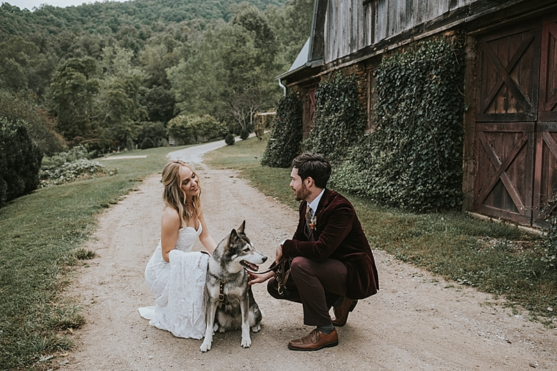raleigh nc wedding with husky dog