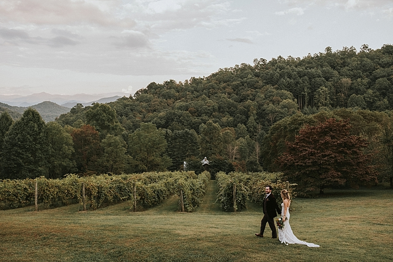 The vineyards at bettys creek sylva nc wedding