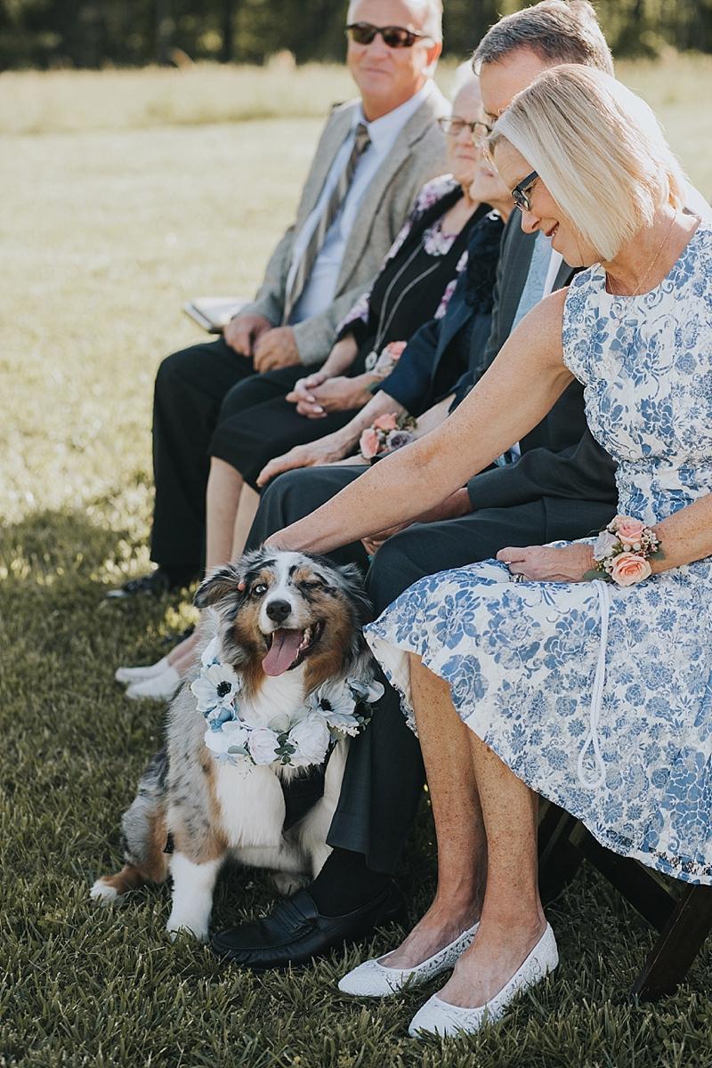 dog friendly north carolina wedding venue